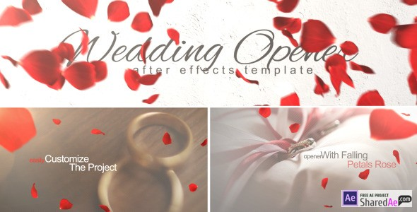 Wedding Opener 10137243 - Videohive shareDAE