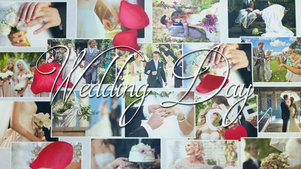 Videohive Wedding 21682797