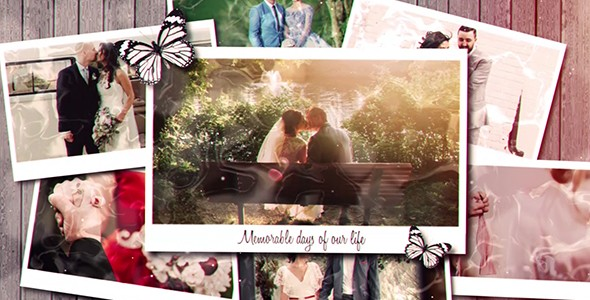 Videohive Wedding Day 21137731