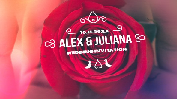 Videohive Minimal & Luxury Wedding Titles 23313573